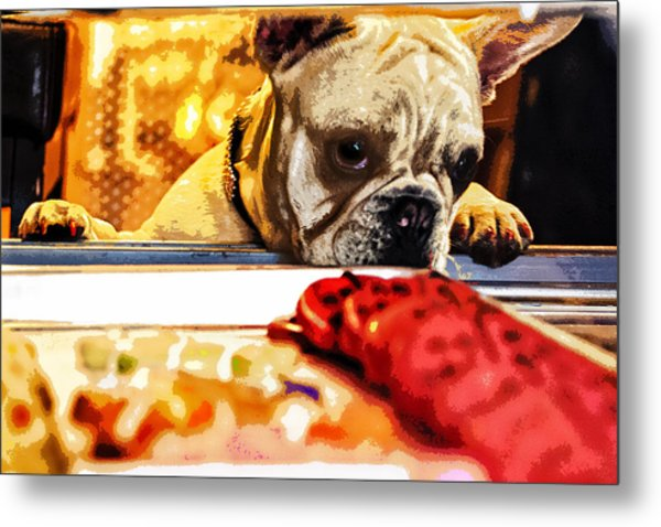 A Dog And His Cookies Metal Print