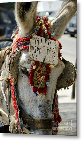 A Donkey Taxi In A Village Of Spain Metal Print by Perry Van Munster