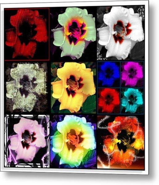 A Dozen Blooms Metal Print
