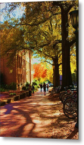A Fall Day On Campus Metal Print