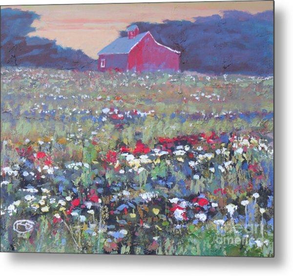 A Field Of Flowers Metal Print by Kip Decker
