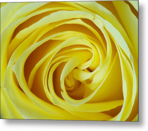 A Grandmother's Love Metal Print