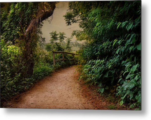 A Green Mile Metal Print by Robin-Lee Vieira