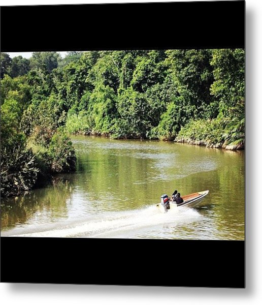 A Ride Amongst The Mangroves, Taken Metal Print