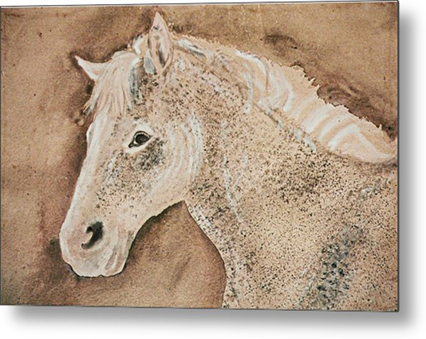 A Stallion Metal Print by Remy Francis