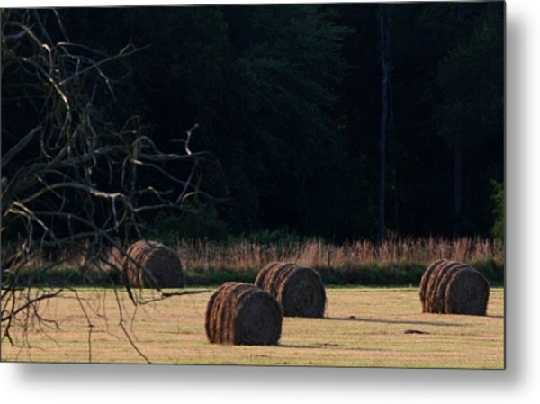 A Summer Evening Metal Print