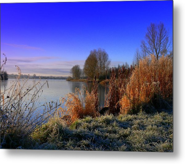A Winter Scene Metal Print by Cat Shatwell