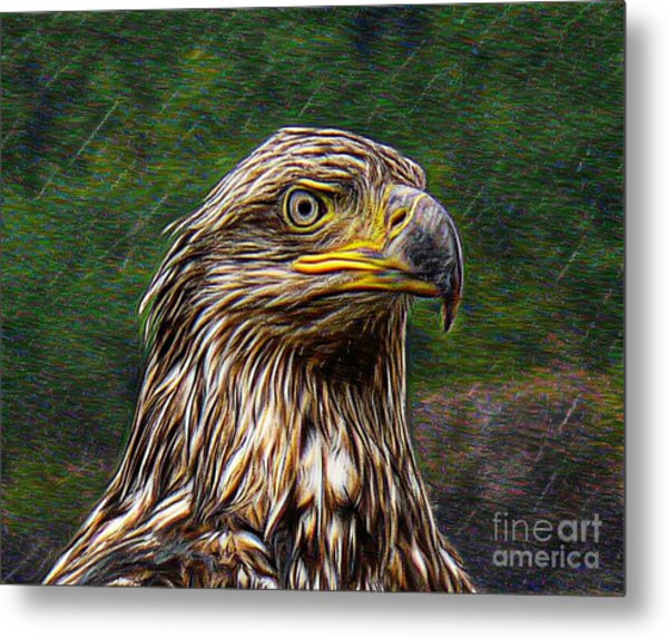 A Young Brave   Metal Print