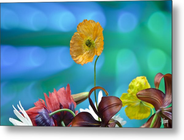 Above The Crowd Metal Print