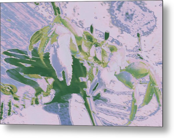 Abstract Crab1 Metal Print