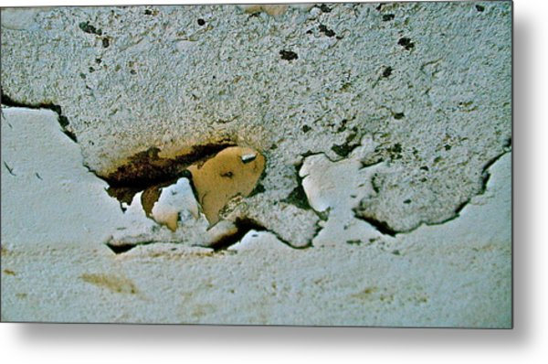 Abstract Photo Metal Print by Cliff Spohn