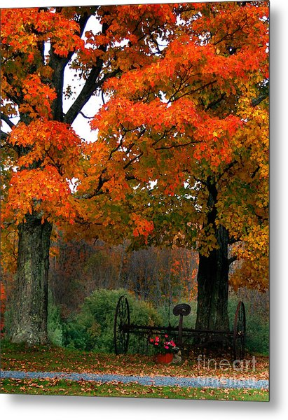 Adirondack Palette Metal Print