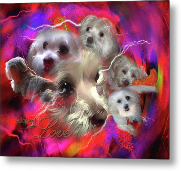 Adopted With Love Metal Print