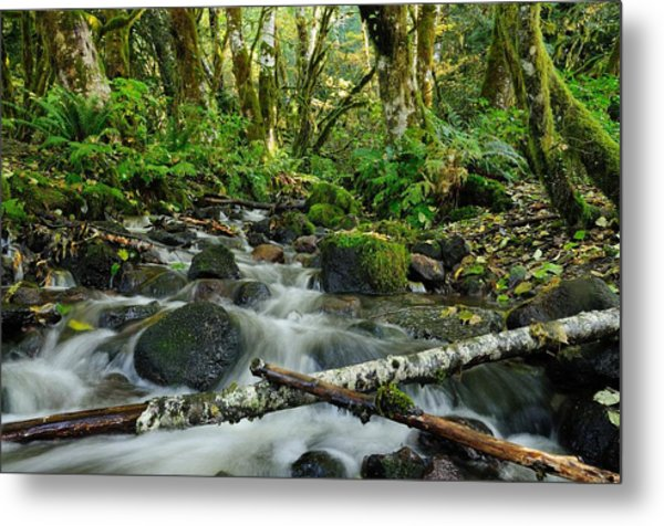Alice Creek Metal Print