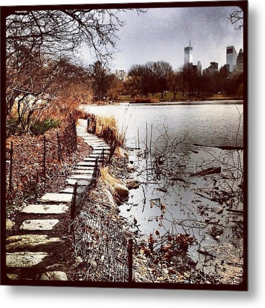 Along The Water. #centralpark #nyc Metal Print