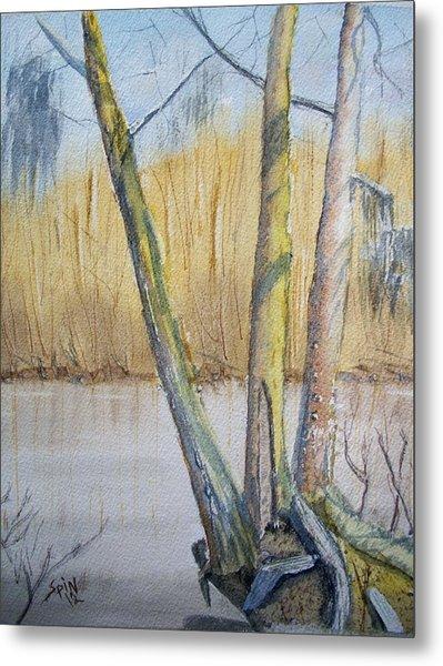 Altamaha River Three Trees Metal Print by Spencer  Joyner