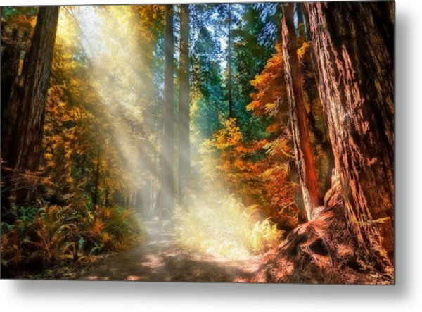 Amongst Giants  Metal Print