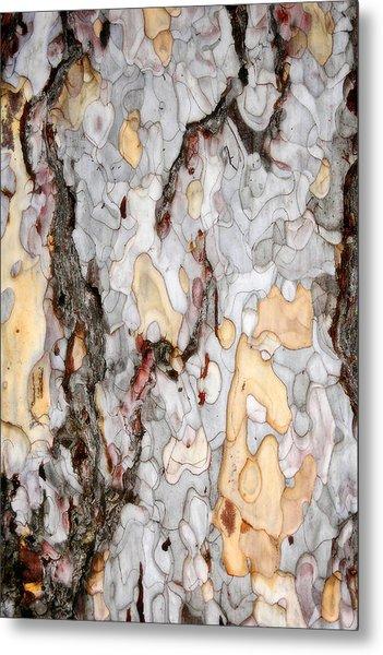 An Bark Of Old Pine Metal Print