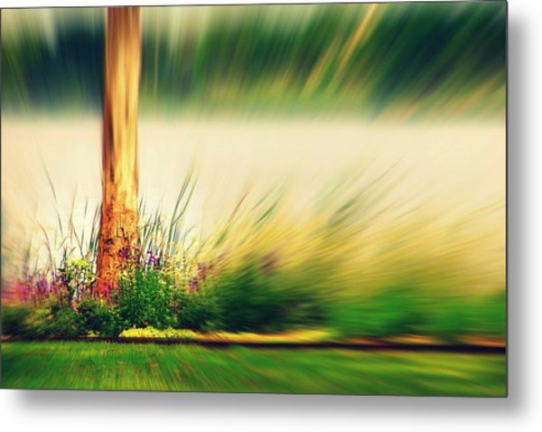 An Explosion Of Beauty Metal Print by Shalini George