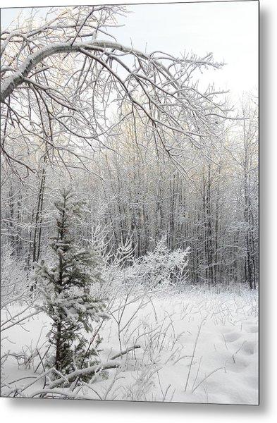 And More Snow Metal Print