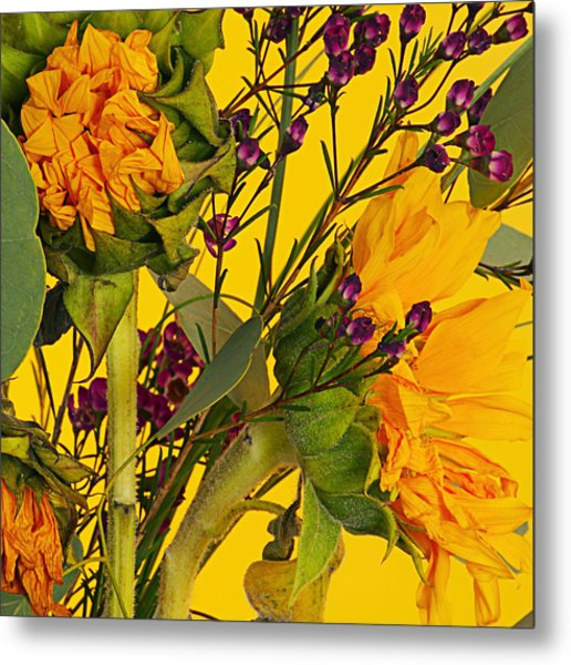 Antique Sunflower Metal Print by Michelle Armstrong