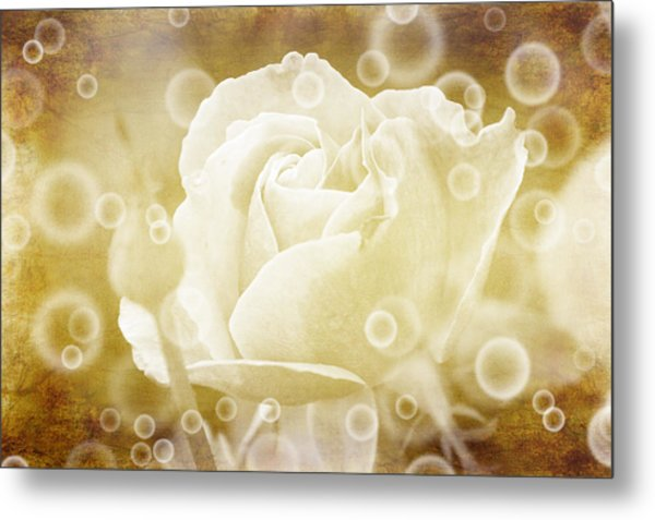 Antiqued Rose And Bubbles Metal Print