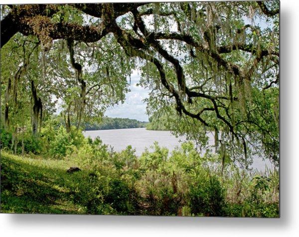 Apalachicola River Metal Print