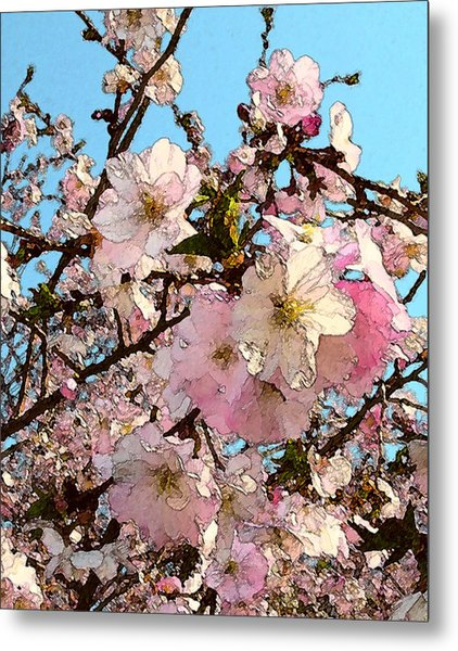 April Morning With Cherry Blossoms Metal Print