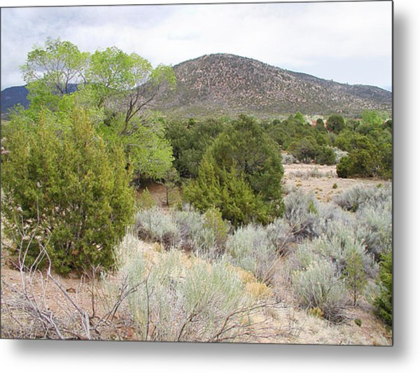 April New Mexico Desert Metal Print