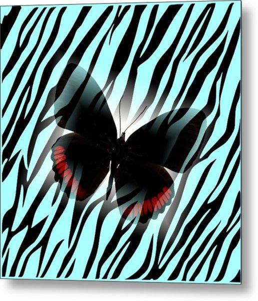 Aqua Zebra With Black Butterfly Metal Print by Florene Welebny