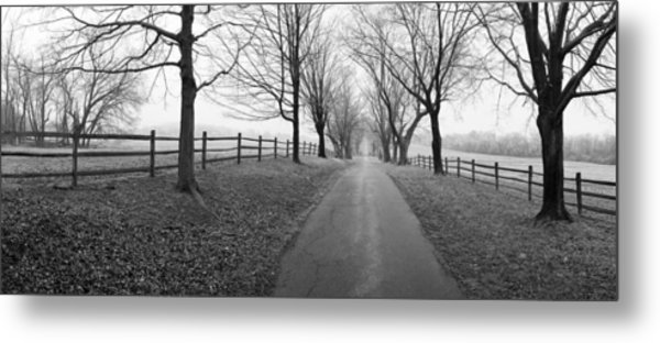Araby Farm Lane Metal Print by Jan W Faul