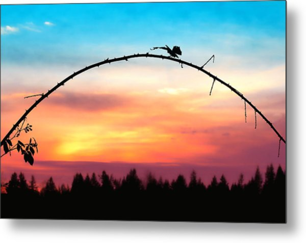 Arch Silhouette Framing Sunset Metal Print