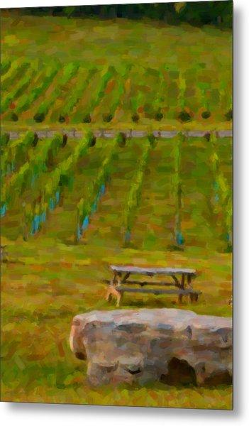 Arrington Vineyards Metal Print by Paul Bartoszek