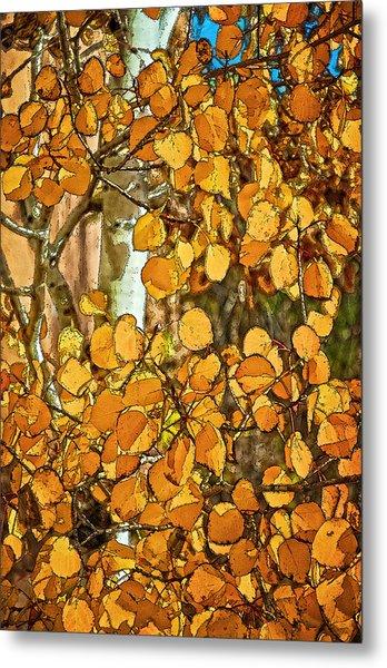 Aspens Gold Metal Print