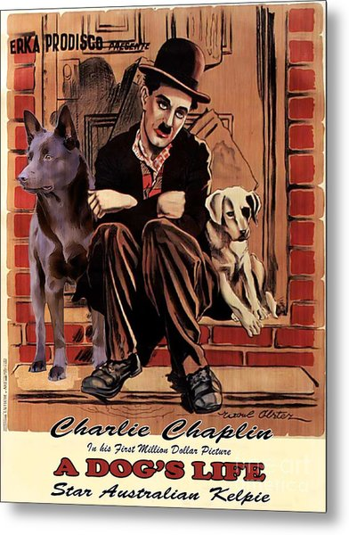 Australian Kelpie - A Dogs Life Movie Poster Metal Print