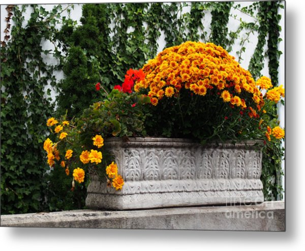 Autum Flowers With Red Accents And Ivy Metal Print by Anne Boyes