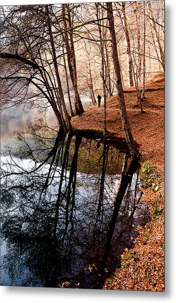 Autumn - 4 Metal Print