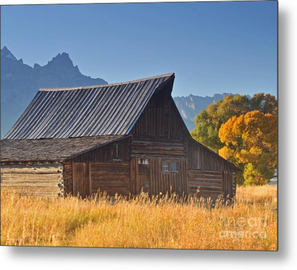 Autumn At The Barn Grand Teton National Park Metal Print