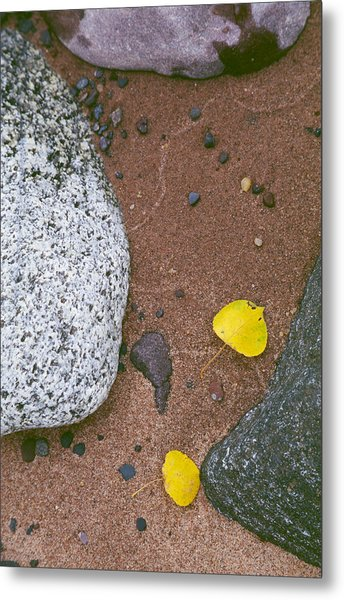 Autumn Beach Metal Print