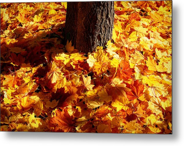 Autumn Carpet Metal Print