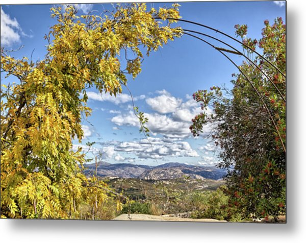 Autumn Clouds With Foliage Metal Print