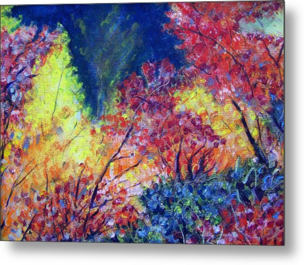 Autumn Color Metal Print by Jon Shepodd