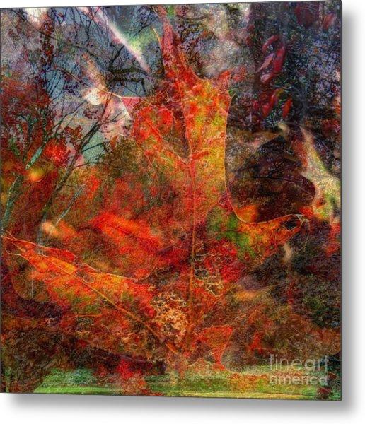 Autumn Fusion 2 Metal Print