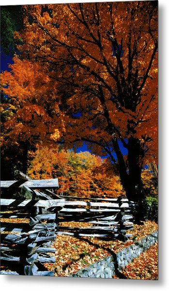 Autumn In Holderness Metal Print