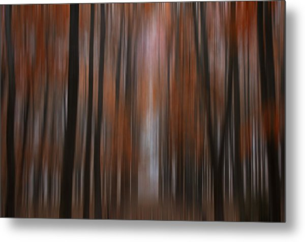 Autumn In The Midwest Metal Print