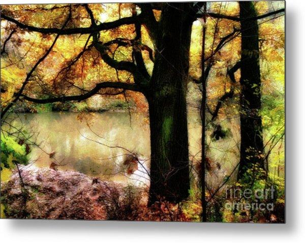 Autumn Oak Tree Metal Print