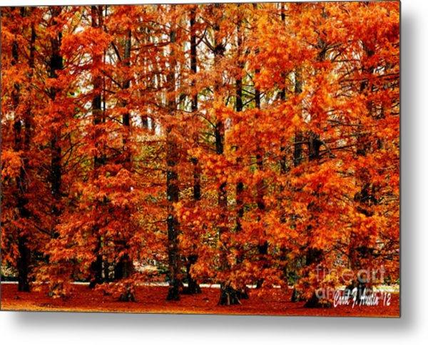 Autumn Red Maple Landscape Metal Print