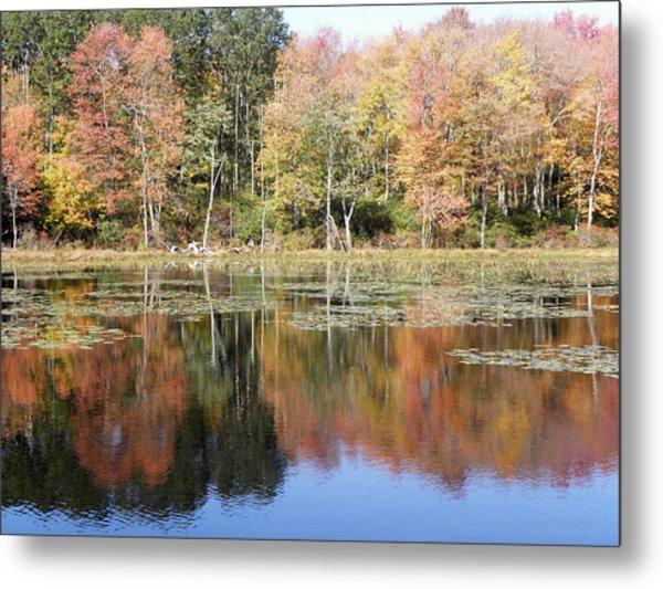 Autumn Reflections Metal Print by Kim Galluzzo Wozniak