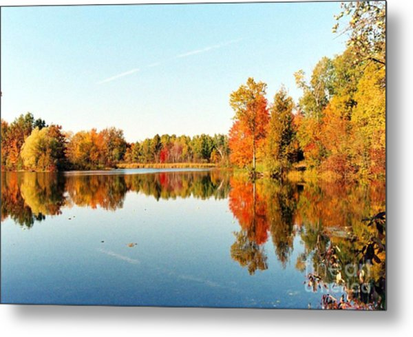 Autumn Splendor Metal Print by Crissy Sherman