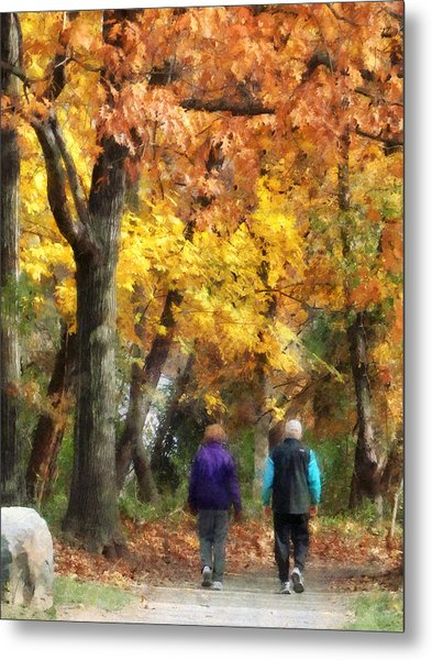 Autumn Stroll Metal Print by Susan Savad